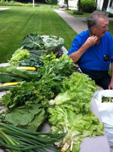 Veggies for seniors